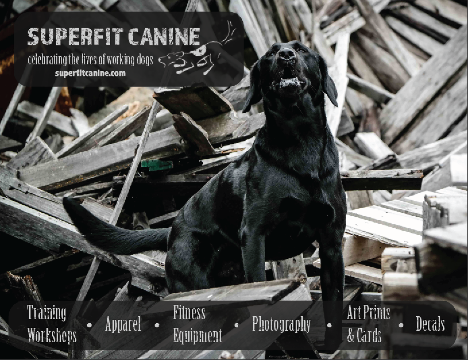 superfit_canine